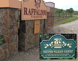 Certified Wildlife Habitat The National Wildlife Federation® (NWF) is pleased to recognize that Raffaldini Vineyards & Winery in Ronda, N.C. has successfully created an official Certified Wildlife Habitat™ site. NWF celebrates the efforts of Raffaldini Vineyards & Winery to create a garden space that improves habitat for birds, butterflies, frogs, and other wildlife by providing essential elements needed by all wildlife – natural food sources, clean water, cover, and places to raise young.