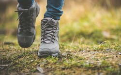 Take A Hike Sunday, April 29th, 2018;      10:30 AM - 1 PM